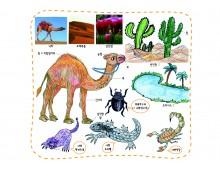 스토리미술9 사막의 배라고 불리는 낙타가사는 사막은 어떤 곳일까