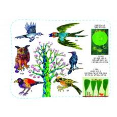 생태과학12 숲에 살고 있는 나무와 새