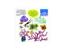 자연과학15 바다의 산호는 왜 식물같은 동물이라고 부를까요