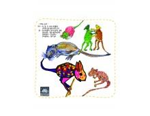 자연과학16 캥거루 쥐는 왜 물을 마시지 않아도 살수 있을까