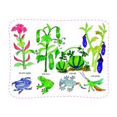 생태과학21 풀과 벌레와 곤충을 그려요